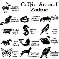 Celtic, Animal, and Butterfly: Celtic Animal  Stag/D  Zodiac  December 24  January 20  Adder/Snake  March 18  Cat  February 18  April 14  January 21  March 17  February 17  Seahorse  Wren.  Cow/Bull  May 13  June 10  April 15  June  9  July 7  May 12  Swan  September 2  Fish Salmon  Horse  A -September  August 5  July 8  29  September 1  August 4  Butterfly  Falcon/Hawk  September  WolfHound  November 25  30  October 28  December  October 27  November 24  23 Which animal you are?
