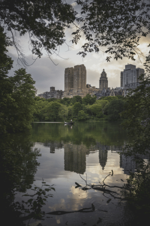 Sunset, Central Park, and Last Night: . Central Park's sunset last night