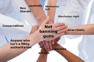The one thing that unites us: centrists libertarian  Neo  left  liberals  libertarian right  Conservatives  Not  anarchists  banning  guns  Anyone who  isn't a filthy  authoritarian  ancoms  ancaps The one thing that unites us