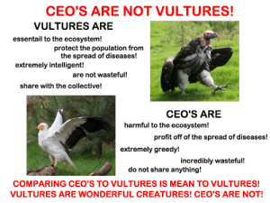 Please do not compare CEO's to vultures! Vultures are our friends!: CEO'S ARE NOT VULTURES!  VULTURES ARE  essentail to the ecosystem!  protect the population from  the spread of diseases!  extremely intelligent!  are not wasteful!  share with the collective!  CEO'S ARE  harmful to the ecosystem!  profit off of the spread of diseases!  extremely greedy!  incredibly wasteful!  do not share anything!  COMPARING CEO'S TO VULTURES IS MEAN TO VULTURES!  VULTURES ARE WONDERFUL CREATURES! CEO'S ARE NOT! Please do not compare CEO's to vultures! Vultures are our friends!
