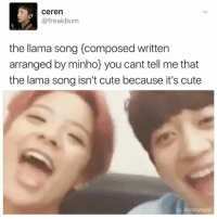 this is the most precious thing I've seen all day: Ceren  @freak bum  the llama song composed written  arranged by minho you cant tell me that  the lama song isn't cute because it's cute  kimmytaev this is the most precious thing I've seen all day