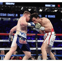 Memes, Lost, and 🤖: CESAR CHAVEZ JR Su  RTS 12 ROUNDS  inner  unieruel  Henness canelo wins a LandSlide Victory over chavezjr. All tonight's Judges Had it 120-108. (He Lost Every Round) canelochavezjr