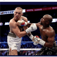 Memes, Shit, and Good: CGREGOR  RTS  MGM RESO KNOCKED A WHOLE BOOGIE OUT THIS NIGGA!!! Good shit @floydmayweather thebest