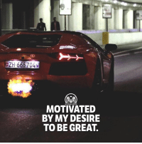 Goals, Memes, and What Is: CH  ZH 666704  MILLIONAIRE MENTOR  MOTIVATED  BY MY DESIRE  TO BE GREAT What is YOUR motivation? Comment below and explain it👇 goals motivation success millionairementor