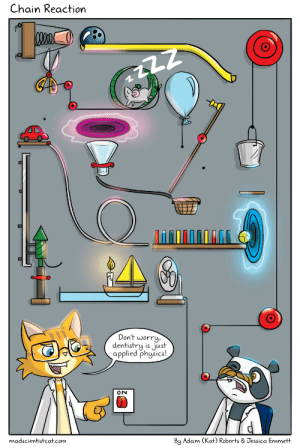 Omg, Tumblr, and Blog: Chain Reaction  4T  Don't worry  dentistry is just  applied phgsics!  15 JS  madscientistcat.com  By Adam (Kat) Roberts & Jessica Emmett omg-images:  Mad Scientist Cat - Chain Reaction [OC]