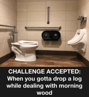 Funny, Memes, and Accepted: CHALLENGE ACCEPTED:  When you gotta drop a log  while dealing with morning  wood Funny Memes Of The Day 36 Pics