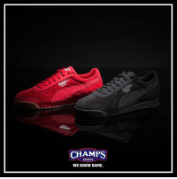 Fresh, Memes, and Puma: CHAMPS  SPORTS  WE KNOW GAME. The Puma Roma gets a fresh suede woven up. Keep it clean and fresh! Now at Champs!