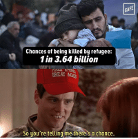 Dank, 🤖, and Aga: Chances of being killed by refugee:  1 in 3.64 billion  GREAT AGA  So you're telling me there's a chance.  CAFE