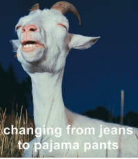 Memes, 🤖, and Jeans: changing from jeans  to pajama pants