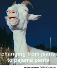 "Club, Tumblr, and Blog: changing from jeans  to pajama pants  you should probably go to TheMetaPicture.com <p><a href=""http://laughoutloud-club.tumblr.com/post/166854423398/that-moment-of-complete-satisfaction"" class=""tumblr_blog"">laughoutloud-club</a>:</p>  <blockquote><p>That Moment Of Complete Satisfaction</p></blockquote>"