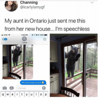 Anaconda, Memes, and Wtf: Channing  @icarlyismygf  My aunt in Ontario just sent me this  from her new house... I'm speechless  ntl AT&T令  3:54 PM  * 100% ■  85  T Mona  Wtf call animal control  Message  q w e r y u p Shook