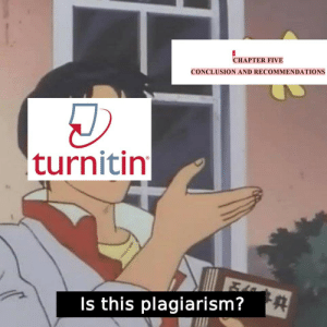 recommendations: CHAPTER FIVE  CONCLUSION AND RECOMMENDATIONS  turnitin  Is this plagiarism?