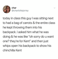 "Memes, Sorry, and Today: char  @charlottejorrey  today in class this guy l was sitting next  to had a bag of carrots & the entire class  he kept throwing them into his  backpack. l asked him what he was  doing & he was like ""oh sorry do u want  one? they're for Kent"" and then just  whips open his backpack to show his  chinchilla Kent So tired"