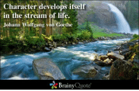 Life, Memes, and 🤖: Character develops itself  in the stream of life.  Johann Wolfgang von Goethe  Brainy  Quote Character develops itself in the stream of life. - Johann Wolfgang von Goethe