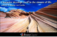 Life, Memes, and 🤖: Character develops itself in the stream of life.  Johann Wolfgang von Goethe  Brainy  Quote