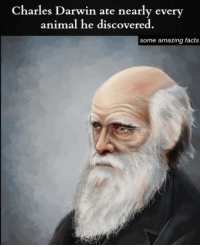 Darwinism: Charles Darwin ate nearly every  animal he discovered.  some amazing facts