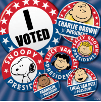 Charlie, Memes, and Browns: CHARLIE BROWN  VOTED  B  o o p  n JIDEN  SIDEYA  PELI  LINUS PRESIDENT  RESID  FRANKLIN  PNTS Time to vote!