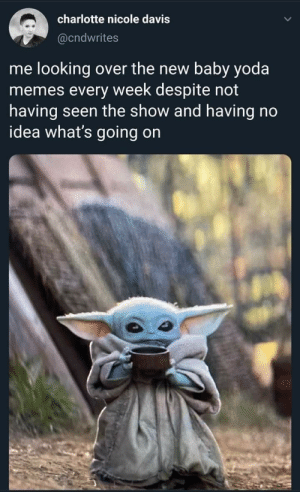 yoda memes: charlotte nicole davis  @cndwrites  me looking over the new baby yoda  memes every week despite not  having seen the show and having no  idea what's going on