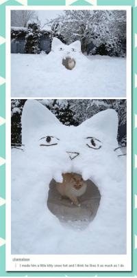 Snow, Cat, and Him: charmeleon:  |  I made him a little kitty snow fort and I think he likes it as much as I do <p>Cat Snow Fort</p>