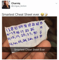 Memes, 🤖, and Cheat Sheet: Charniq  @Lingua Action  Smartest Cheat Sheet ever  21 28  za Smartest Cheat Sheet Ever 😹🙊