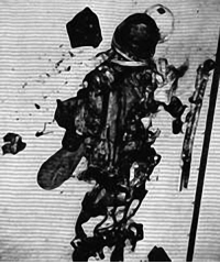 Charred Remains of Gus Grissom One of Three Astronauts in ...