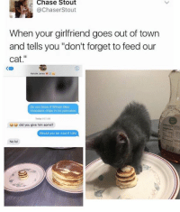 """Memes, 🤖, and Cat: Chase Stout  @Chaser Stout  When your girlfriend goes out of town  and tells you """"don't forget to feed our  cat  Kenzie Jones  Do you know if Wilson likes  chocolate chips in his pancakes  Today 01AM  did you give him some?  Would you be mad if did  No lol Ugh.. 😍😍"""