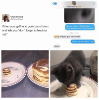 "Cats, Dank, and Lol: Chase Stout  @Chaser Stout  When your girlfriend goes out of town  and tells you ""don't forget to feed our  cat  Kenzie Jones V  Do you know if Wilson likes  chocolate chips in his pancakes  Today 9 01 AM  did you give him some?  Would you be mad if I did  No lol"