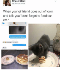 """Cats, Girl Memes, and Cat: Chase Stout  ChaserStout  When your girlfriend goes out of town  and tells you """"don't forget to feed our  cat  zo  Kenzie Jones  Do you know if Wilson likes  chocolate chips in his pancakes  Today 9:01 AM  did you give him some?  Would you be mad if I did  No lo Cutest thing you'll see all day"""