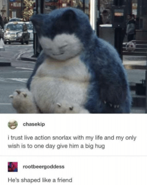 Life, Memes, and Live: chasekip  i trust live action snorlax with my life and my only  wish is to one day give him a big hug  rootbeergoddess  He's shaped like a friend