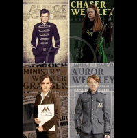 Memes, Heroes, and 🤖: CHASER  WE  E.  eng  MINISTRY AUROR  AM  EFT My heroes. harrypotter ronweasley hermionegranger ginnyweasley