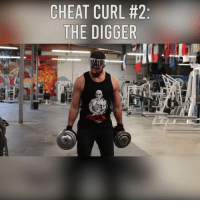 Memes, 🤖, and Curl: CHEAT CURL #2:  HE DIGGER  P,41  #R  LE  RG  UG  CD  TE If you're going to cheat, cheat properly.