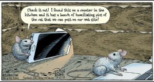 memehumor:20 Eccentric  Award-Winning Comics From Bizarro: Check it out! I found this on a counter in the  kitehen and it has a buneh of humiliating pies of  the eat that we can post on our Web site!  BIZARRO.COM  Dist.wKons Ratues Facebook.com/ BizarroComies 312 I7 memehumor:20 Eccentric  Award-Winning Comics From Bizarro