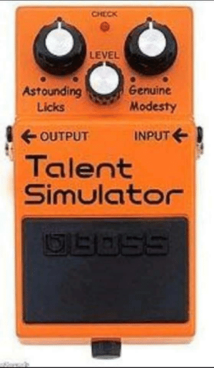 Simulator: CHECK  LEVEL  Astounding  Genuine  Modesty  Licks  OUTPUT  INPUT E  Talent  Simulator