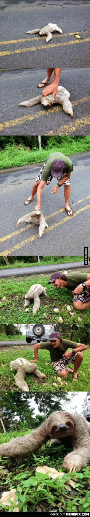 My friend saved a sloth from the middle of the roadomg-humor.tumblr.com: CHECK OUT MEMEPIX.COM  МEMEРIX.Cом My friend saved a sloth from the middle of the roadomg-humor.tumblr.com