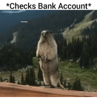 Funny, Life, and Lol: *Checks Bank Account*  #hood clips My life right now lol
