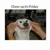 Cheer up it's Friday  @hilarious ted