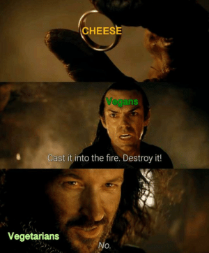 Fire, Irl, and Me IRL: CHEESE  VeganS  Cast it into the fire. Destroy it!  Vegetarians  O. Me_irl