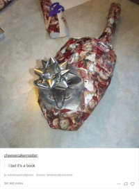 Cats, Dude, and I Bet: cheesecakemaster  i bet it's a book  outsidewarmafghans Source: fantasticallyweirdshit  261,562 notes Dude my cats wouldn't let me get near them with the wrapping paper, they'd rip it all up first