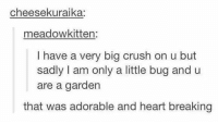 Crush, Heart, and Adorable: cheesekuraika:  meadowkitten:  I have a very big crush on u but  sadly I am only a little bug and u  are a garden  that was adorable and heart breaking