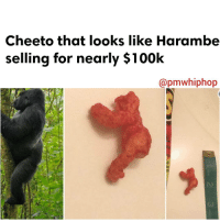 "Listed on Ebay as ""Gorilla Hot Cheetos - RARE - One of a Kind Cheetos - Harambe Gorilla,"" a single Flamin' HotCheeto that looks kind of like a picture of the famous gorilla is up for auction, and bids have been skyrocketing. $100k at the time of this post. - FULL STORY AT PMWHIPHOP.COM LINK IN BIO: Cheeto that looks like Harambe  selling for nearly $100k  Capmwhiphop Listed on Ebay as ""Gorilla Hot Cheetos - RARE - One of a Kind Cheetos - Harambe Gorilla,"" a single Flamin' HotCheeto that looks kind of like a picture of the famous gorilla is up for auction, and bids have been skyrocketing. $100k at the time of this post. - FULL STORY AT PMWHIPHOP.COM LINK IN BIO"