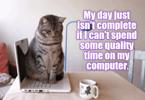 Cheezburger's classic LOLCats! Your ultimate source for the newest, and cutest, cat memes!#cats #funnycats #catmemes #funnymemes #animalmemes: Cheezburger's classic LOLCats! Your ultimate source for the newest, and cutest, cat memes!#cats #funnycats #catmemes #funnymemes #animalmemes