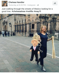 Memes, Chelsea Handler, and 🤖: Chelsea Handler  Yesterday at 6:20 PM  Instagram  Just walking through the streets of Mexico looking for a  good tree. #chelseashow #netflix #may 11 YOOOOOO