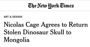 Dinosaur, Nicolas Cage, and Tumblr: CheNew Hork Eimes  ART & DESIGN  Nicolas Cage Agrees to Return  Stolen Dinosaur Skull to  Mongolia twitterlols: