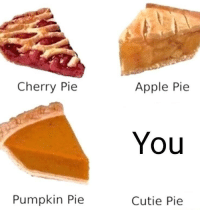 Apple, Pumpkin, and Apple Pie: Cherry Pie  Apple Pie  You  Pumpkin Pie  Cutie Pie <p>Not sure if this has already been posted</p>