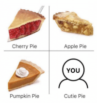 Apple, Memes, and Pumpkin: Cherry Pie  Apple Pie  YOU  Pumpkin Pie  Cutie Pie https://t.co/YSdBNucpA8