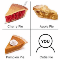 Apple, Funny, and Memes: Cherry Pie  Apple Pie  YOU  Pumpkin Pie  Cutie Pie SarcasmOnly