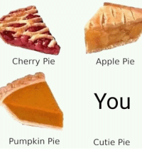 Apple, Memes, and Sorry: Cherry Pie  Apple Pie  You  Pumpkin Pie  Cutie Pie Sorry, I prefer cake.<p><b><i>You need your required daily intake of memes! Follow <a>@nochillmemes</a>​ for help now!</i></b><br/></p>
