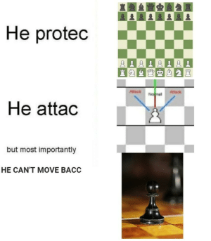Chess memes by halvoor MORE MEMES: Chess memes by halvoor MORE MEMES