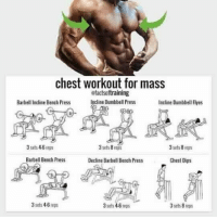 RT @FactofWorkout: Chest workout for mass! https://t.co/j0tcTAAeRu: chest workout for mass  efactsoftraining  Incline Dumbbell Pres  Barbell Incline Bench Press  Incline Dumbbell Flyes  3 sets 4-6 reps  3 sets 8reps  3 sets 8 reps  Barbell Bench Press  Decline Bathell Bench Press  Chest Dips  3 sets 4-6 rep  3 sets 4-6 teps  3 sels 8 reps RT @FactofWorkout: Chest workout for mass! https://t.co/j0tcTAAeRu
