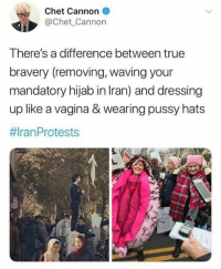 Memes, Pussy, and True: Chet Cannon  @Chet Cannon  There's a difference between true  bravery (removing,waving your  mandatory hijab in Iran) and dressing  up like a vagina & wearing pussy hats  拱ran Protests (GC)